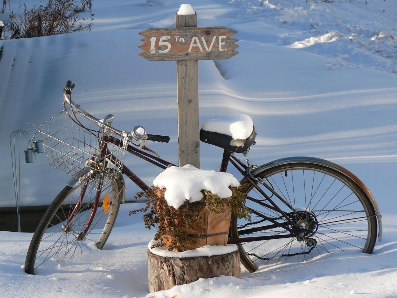 Rower musi być dobrany do trasy